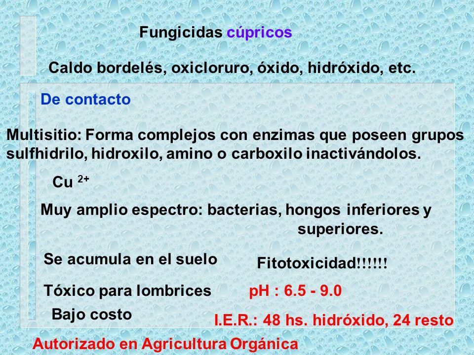 Fungicidas cúpricos De contacto Multisitio: Forma complejos con enzimas que poseen grupos sulfhidrilo, hidroxilo, amino o carboxilo inactivándolos. Cu