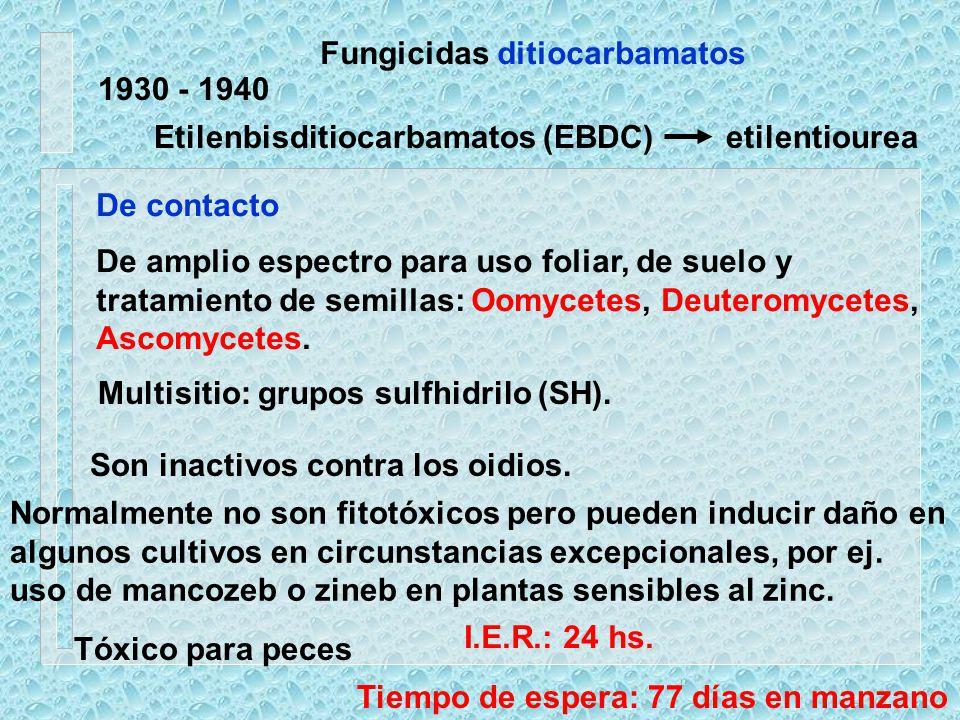 Fungicidas ditiocarbamatos 1930 - 1940 De contacto De amplio espectro para uso foliar, de suelo y tratamiento de semillas: Oomycetes, Deuteromycetes,