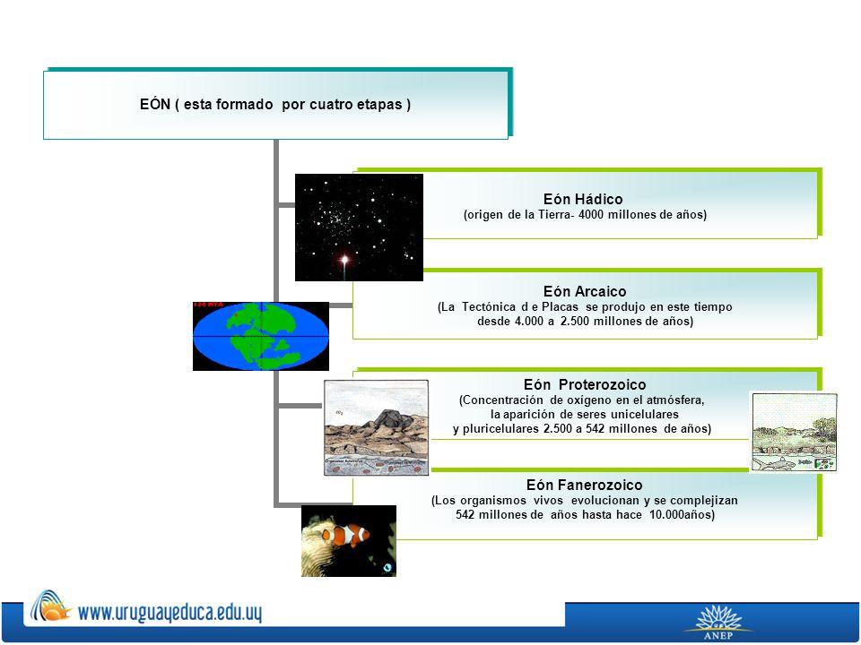 EÓN ( esta formado por cuatro etapas ) Eón Hádico (origen de la Tierra- 4000 millones de años) Eón Arcaico (La Tectónica d e Placas se produjo en este