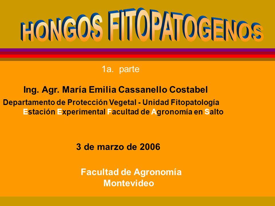 Ing.Agr. María Emilia Cassanello Costabel Facultad de Agronomía Montevideo 3 de marzo de 2006 1a.