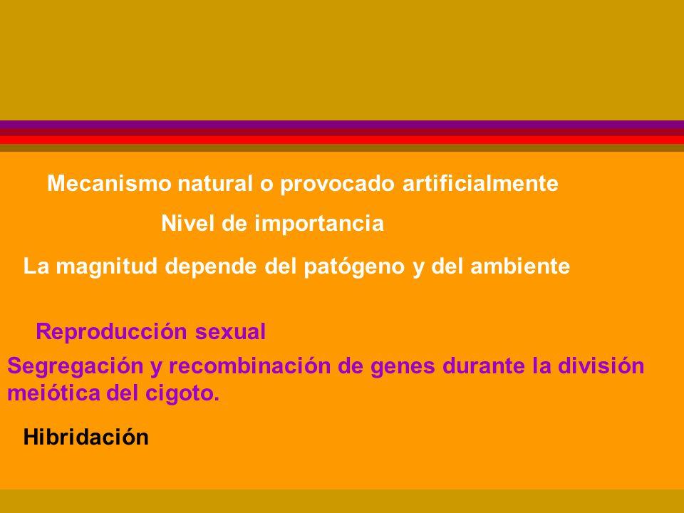 Mecanismo natural o provocado artificialmente Nivel de importancia La magnitud depende del patógeno y del ambiente Reproducción sexual Segregación y recombinación de genes durante la división meiótica del cigoto.