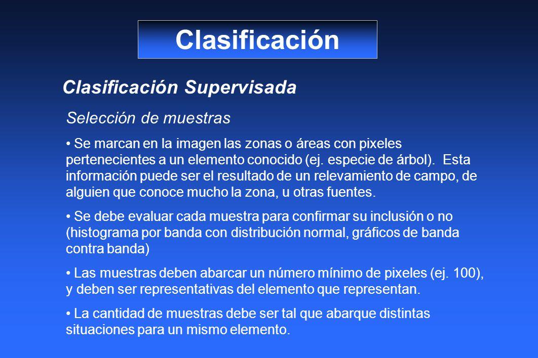 Clasificación Clasificación Supervisada Selección de muestras Se marcan en la imagen las zonas o áreas con pixeles pertenecientes a un elemento conocido (ej.