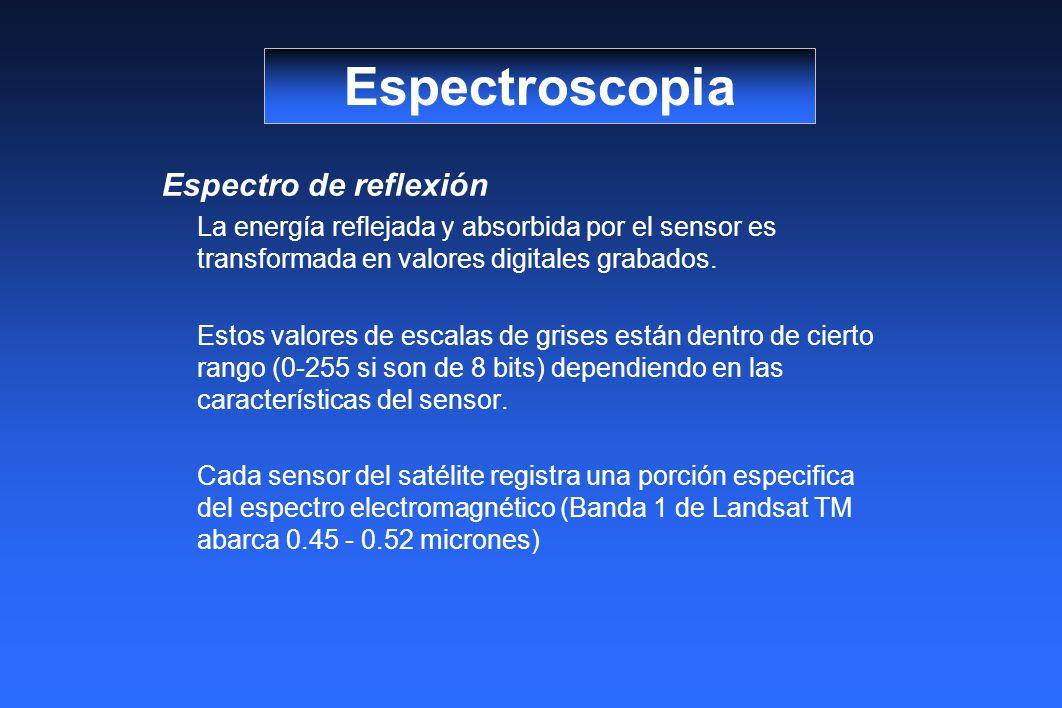 Espectro de reflexión La energía reflejada y absorbida por el sensor es transformada en valores digitales grabados. Estos valores de escalas de grises