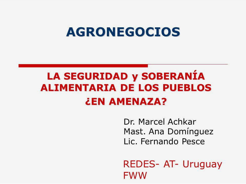 AGRONEGOCIOS LA SEGURIDAD y SOBERANÍA ALIMENTARIA DE LOS PUEBLOS ¿EN AMENAZA? Dr. Marcel Achkar Mast. Ana Domínguez Lic. Fernando Pesce REDES- AT- Uru