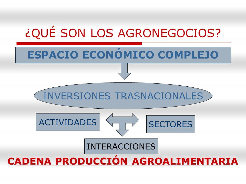 ¿QUÉ SON LOS AGRONEGOCIOS? ESPACIO ECONÓMICO COMPLEJO INVERSIONES TRASNACIONALES ACTIVIDADES INTERACCIONES SECTORES CADENA PRODUCCIÓN AGROALIMENTARIA