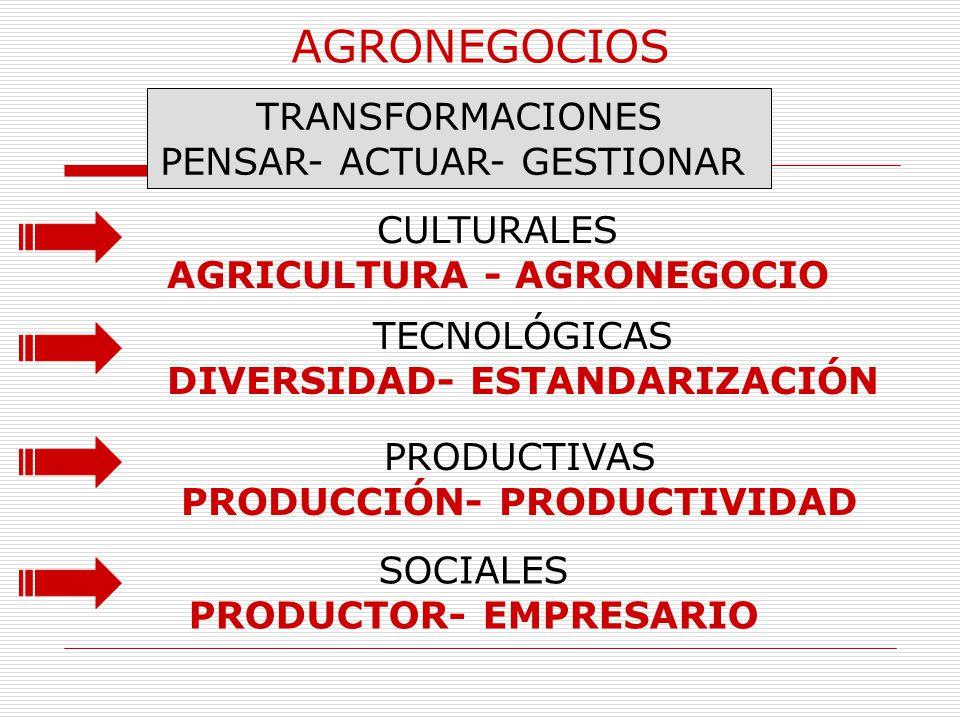 AGRONEGOCIOS TRANSFORMACIONES PENSAR- ACTUAR- GESTIONAR CULTURALES AGRICULTURA - AGRONEGOCIO TECNOLÓGICAS DIVERSIDAD- ESTANDARIZACIÓN PRODUCTIVAS PROD