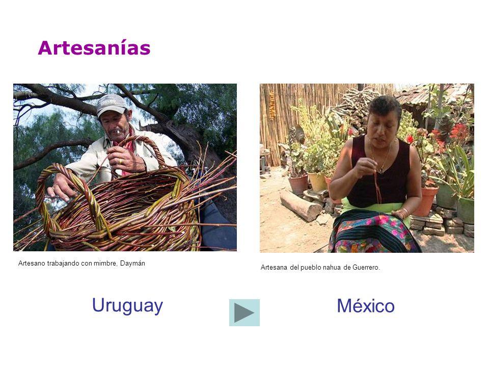Artesano trabajando con mimbre, Daymán Artesanías Artesana del pueblo nahua de Guerrero. Uruguay México
