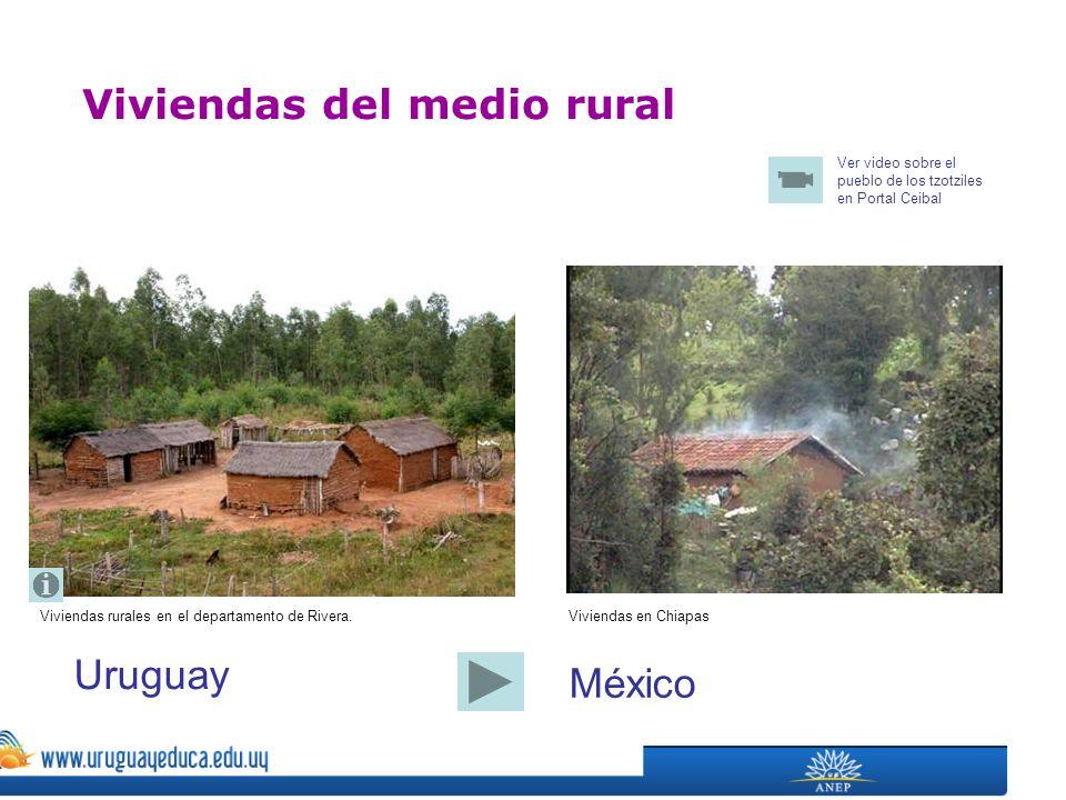Viviendas rurales en el departamento de Rivera. Viviendas del medio rural Viviendas en Chiapas Uruguay México Ver video sobre el pueblo de los tzotzil