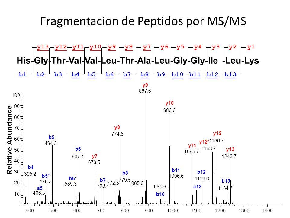 Fragmentacion de Peptidos por MS/MS His-Gly-Thr-Val-Val-Leu-Thr-Ala-Leu-Gly-Gly-Ile -Leu-Lys b1b4b3b5b6b7b8b9b10b2b11b12b13 y13y10y11y9y8y7y6y5y4y12y3
