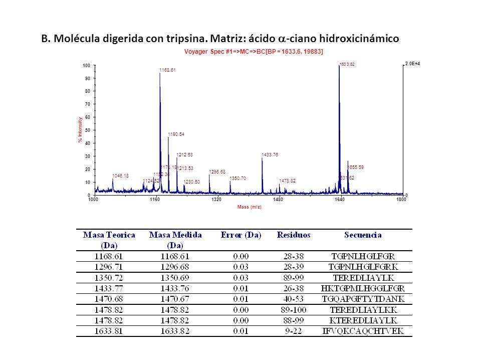 100011601320148016401800 Mass (m/z) 0 2.0E+4 0 10 20 30 40 50 60 70 80 90 100 % Intensity Voyager Spec #1=>MC=>BC[BP = 1633.6, 19883] 1168.61 1190.54
