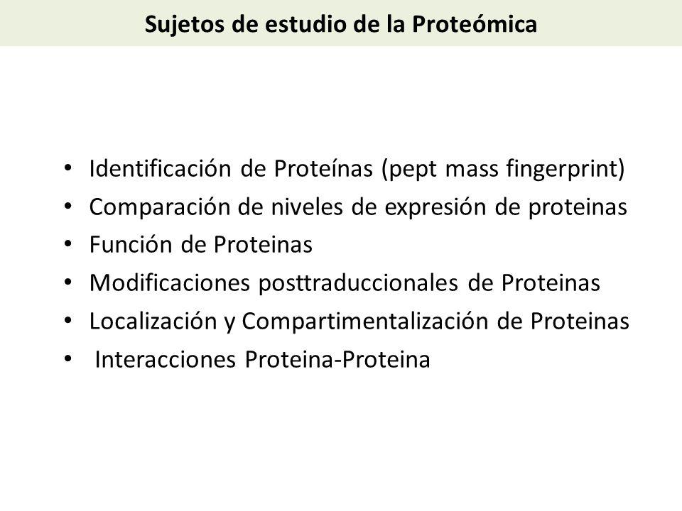 Sujetos de estudio de la Proteómica Identificación de Proteínas (pept mass fingerprint) Comparación de niveles de expresión de proteinas Función de Pr