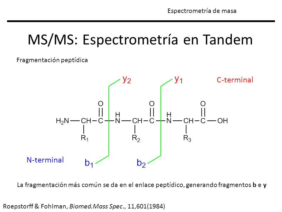N-terminal C-terminal MS/MS: Espectrometría en Tandem Espectrometría de masa Fragmentación peptídica Roepstorff & Fohlman, Biomed.Mass Spec., 11,601(1