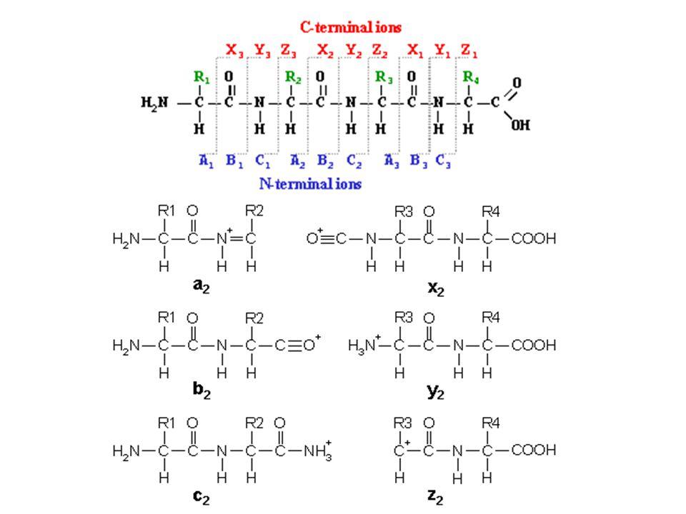 y ionsb ions b1 b2 b3 b4 y4 y3 y2 y1 http://db.systemsbiology.net:8080/proteomicsToolkit/FragIonServlet.html Espectrometría de masa Las m/z medidas por MS/MS se comparan con tablas de masas teoricas obtenidas con la secuencia del peptido, que puede ser obtenida de bases de datos