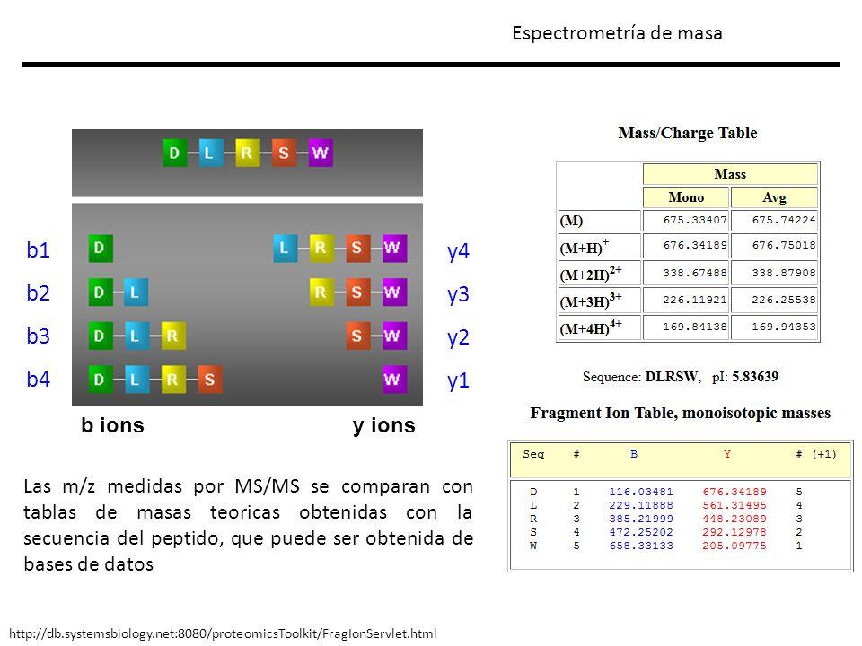 b1b1 b2b2 b3b3 y1y1 y2y2 y3y3 LF K G GL K F Relative Intensity m/z FLGK ++ FLGK ++ FLGK ++ CID FLGK ++ FLGK ++ FLGK ++ b1b1 b2b2 b3b3 y3y3 y2y2 y1y1 FLGK ++ FLGK + Espectrometría de masa Para asignar los iones b/y tenemos que conocer la secuencia de aa.