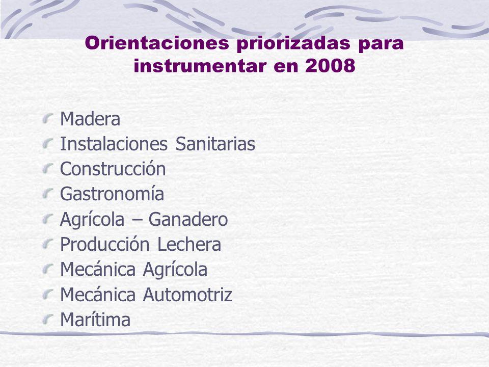 Orientaciones priorizadas para instrumentar en 2008 Madera Instalaciones Sanitarias Construcción Gastronomía Agrícola – Ganadero Producción Lechera Mecánica Agrícola Mecánica Automotriz Marítima