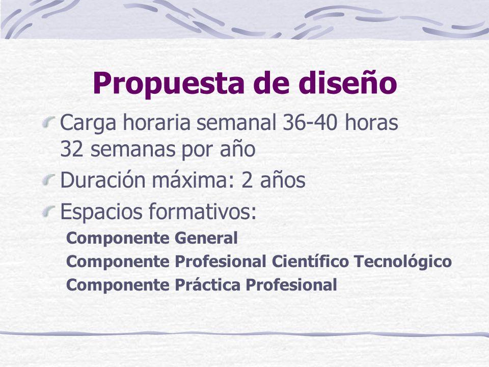 Propuesta de diseño Carga horaria semanal 36-40 horas 32 semanas por año Duración máxima: 2 años Espacios formativos: Componente General Componente Profesional Científico Tecnológico Componente Práctica Profesional