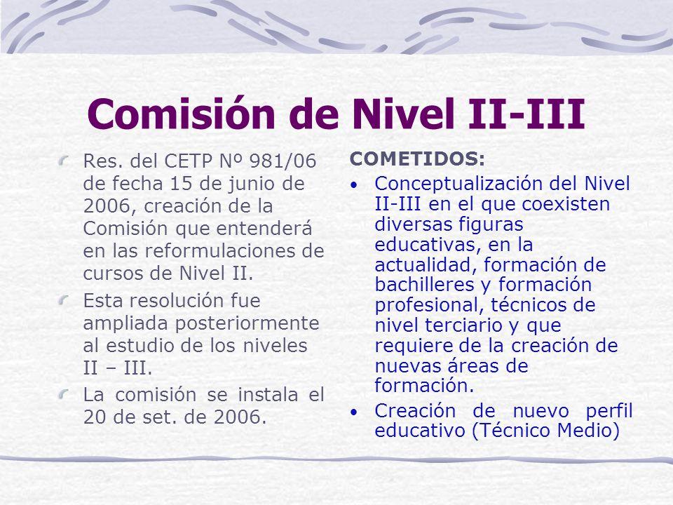 Comisión de Nivel II-III Res.