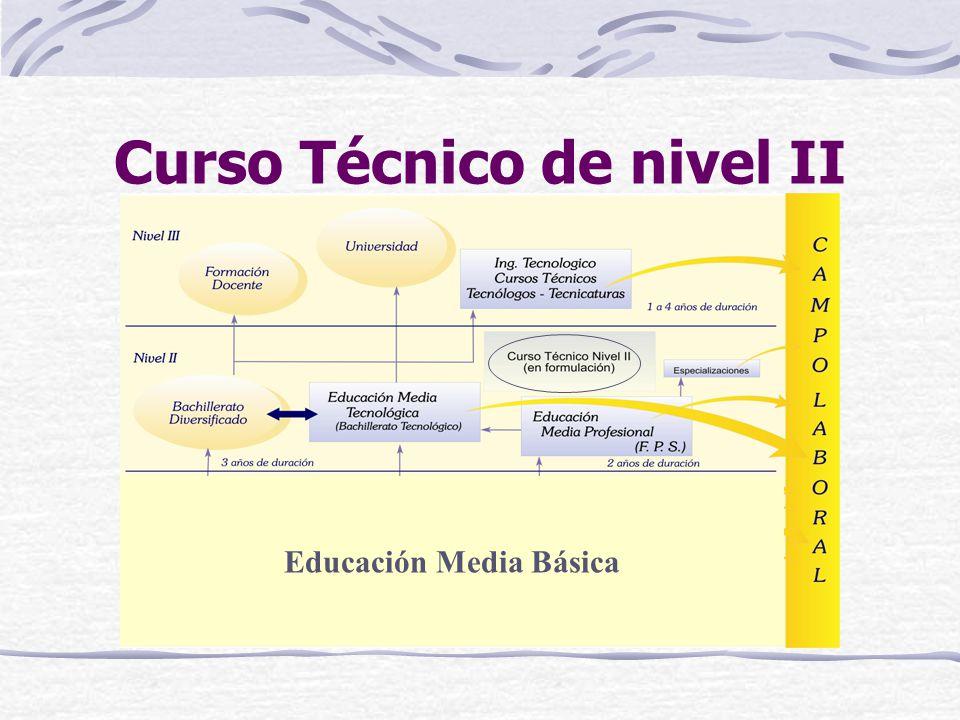 Educación Media Básica Curso Técnico de nivel II