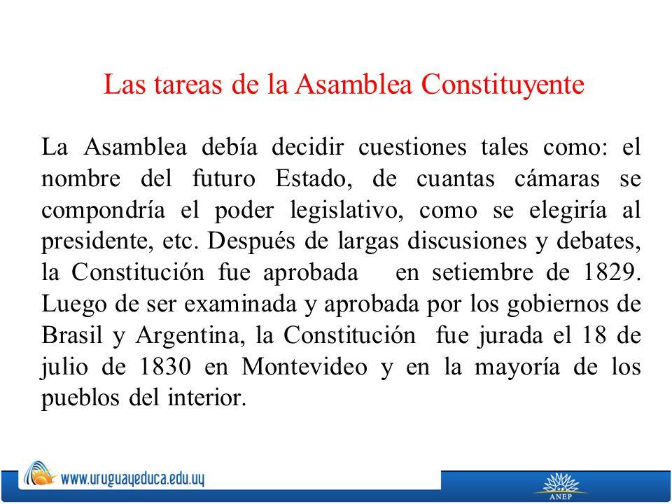 La Asamblea debía decidir cuestiones tales como: el nombre del futuro Estado, de cuantas cámaras se compondría el poder legislativo, como se elegiría