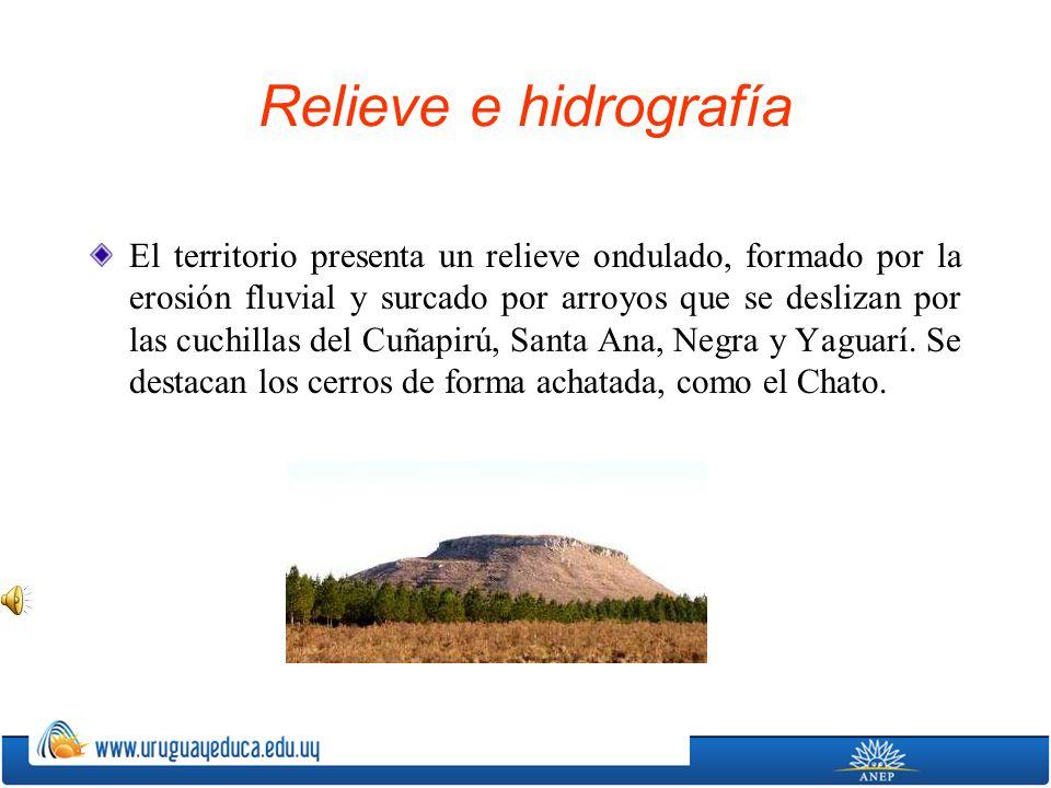 Relieve e hidrografía El territorio presenta un relieve ondulado, formado por la erosión fluvial y surcado por arroyos que se deslizan por las cuchill