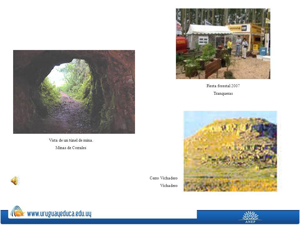 Vista de un túnel de mina. Minas de Corrales Fiesta forestal 2007 Tranqueras Cerro Vichadero Vichadero