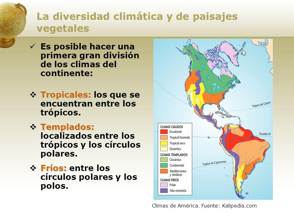 La diversidad climática y de paisajes vegetales Es posible hacer una primera gran división de los climas del continente: Tropicales: Tropicales: los q