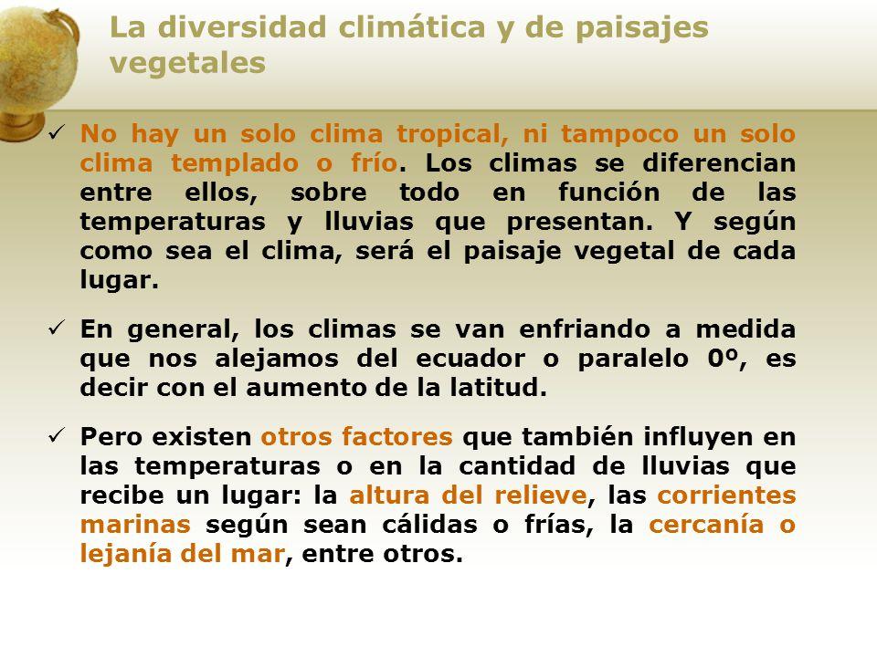 La diversidad climática y de paisajes vegetales No hay un solo clima tropical, ni tampoco un solo clima templado o frío. Los climas se diferencian ent