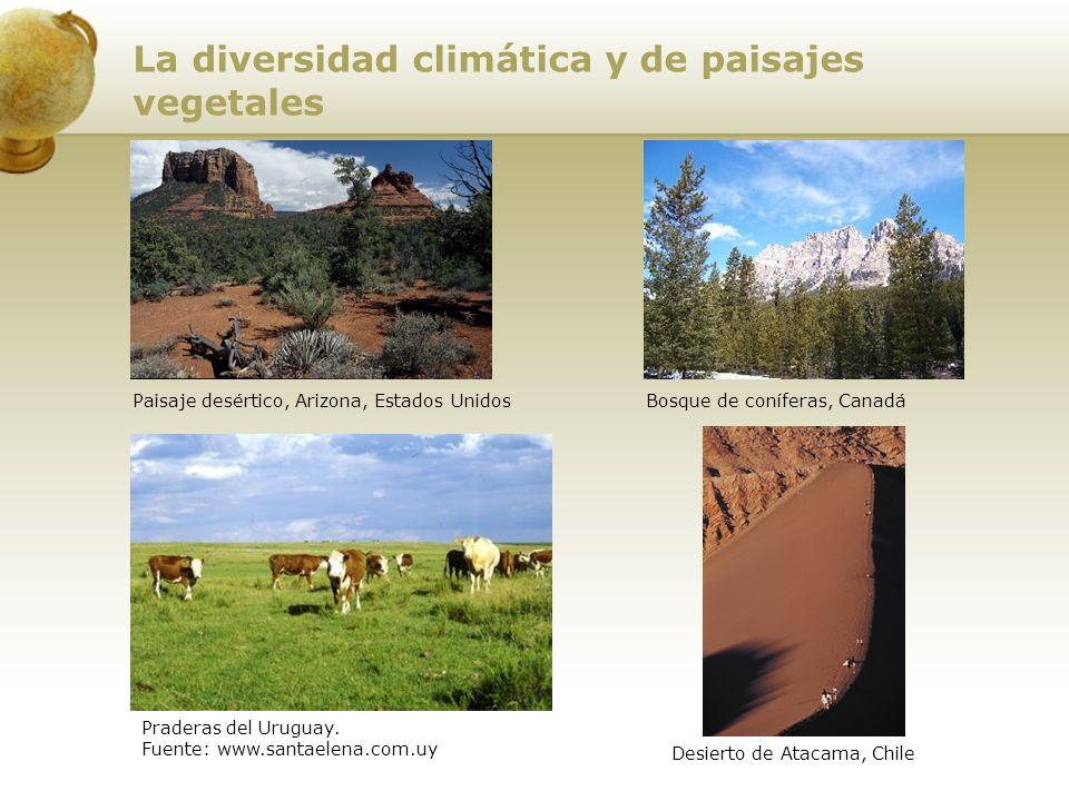 Bosque de coníferas, CanadáPaisaje desértico, Arizona, Estados Unidos Praderas del Uruguay. Fuente: www.santaelena.com.uy Desierto de Atacama, Chile