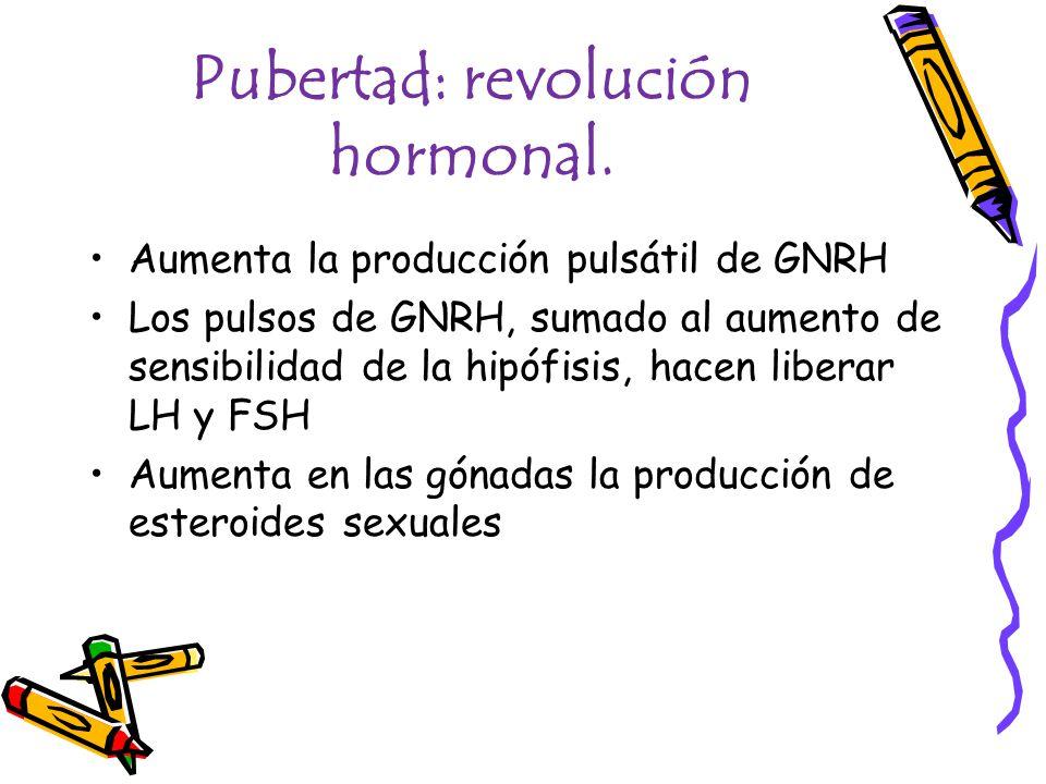 Pubertad: revolución hormonal. Aumenta la producción pulsátil de GNRH Los pulsos de GNRH, sumado al aumento de sensibilidad de la hipófisis, hacen lib