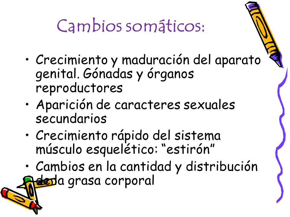 Cambios somáticos: Crecimiento y maduración del aparato genital. Gónadas y órganos reproductores Aparición de caracteres sexuales secundarios Crecimie