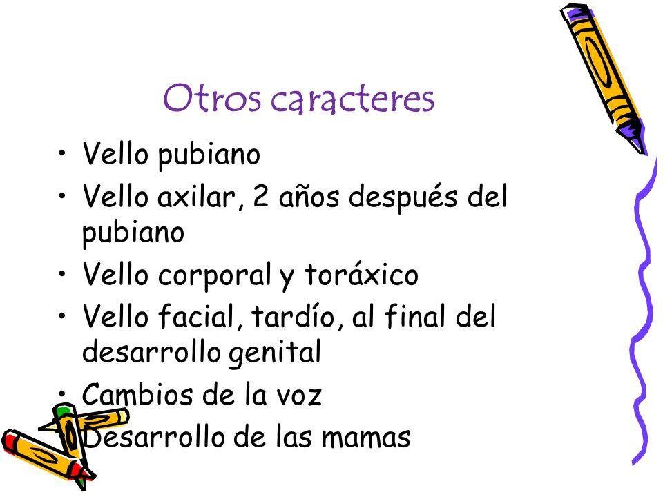 Otros caracteres Vello pubiano Vello axilar, 2 años después del pubiano Vello corporal y toráxico Vello facial, tardío, al final del desarrollo genital Cambios de la voz Desarrollo de las mamas