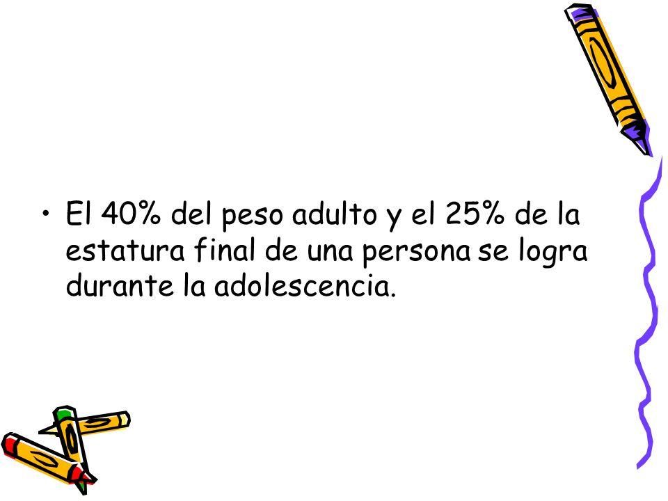 El 40% del peso adulto y el 25% de la estatura final de una persona se logra durante la adolescencia.