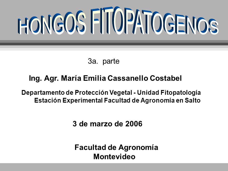 3a. parte Ing. Agr. María Emilia Cassanello Costabel Departamento de Protección Vegetal - Unidad Fitopatología 3 de marzo de 2006 Facultad de Agronomí