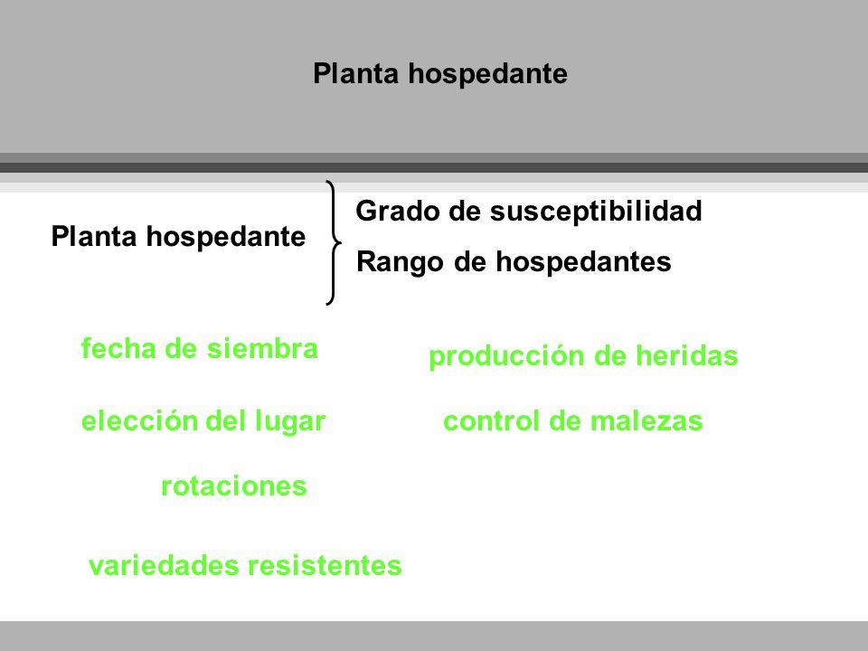 Planta hospedante Grado de susceptibilidad fecha de siembra elección del lugar producción de heridas Rango de hospedantes rotaciones control de maleza