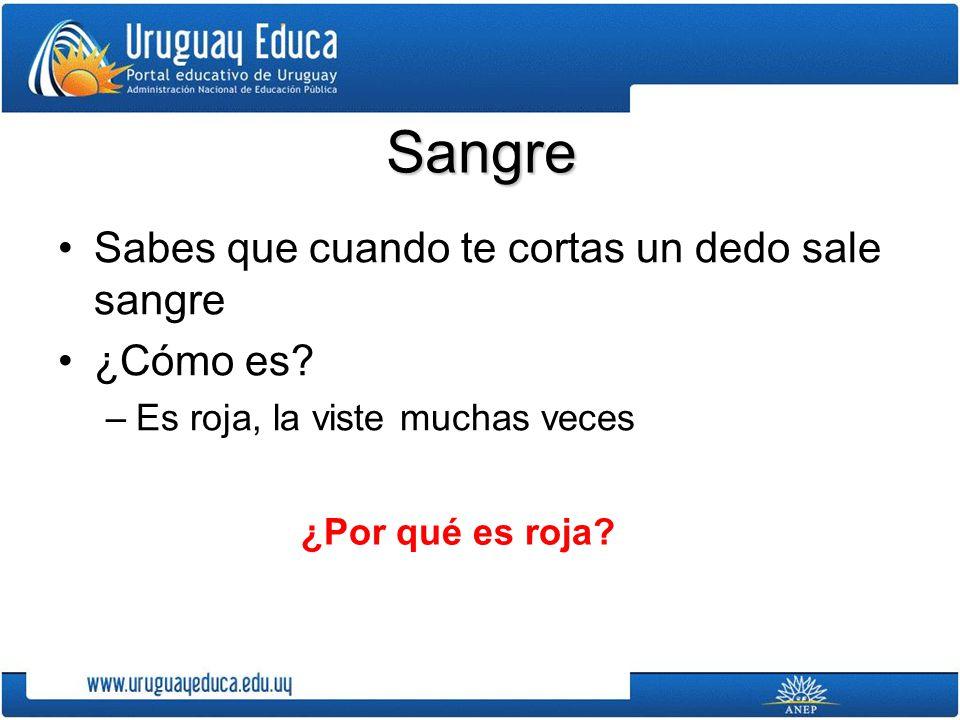 PARA PROFUNDIZAR: Video que muestra el corazón humano latiendo: http://www.uruguayeduca.edu.uy/Portal.Base/We b/verContenido.aspx?ID=211181 http://www.uruguayeduca.edu.uy/Portal.Base/We b/verContenido.aspx?ID=211181 Y para comparar nuestro sistema circulatorio con otros seres vivos: –Nervaduras de una hoja http://www.uruguayeduca.edu.uy/Portal.Base/Web/Ve rContenido.aspx?ID=202617 http://www.uruguayeduca.edu.uy/Portal.Base/Web/Ve rContenido.aspx?ID=202617 –Sistema circulatorio de un pez http://www.uruguayeduca.edu.uy/Portal.Base/Web/Ve rContenido.aspx?ID=135189 http://www.uruguayeduca.edu.uy/Portal.Base/Web/Ve rContenido.aspx?ID=135189