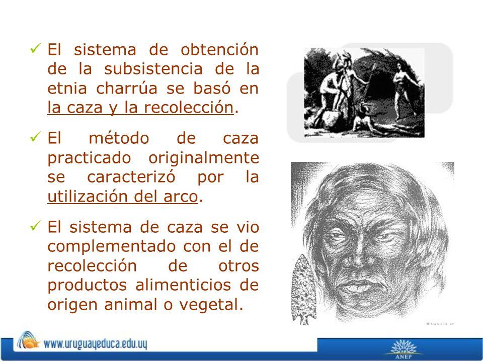 El sistema de obtención de la subsistencia de la etnia charrúa se basó en la caza y la recolección. El método de caza practicado originalmente se cara