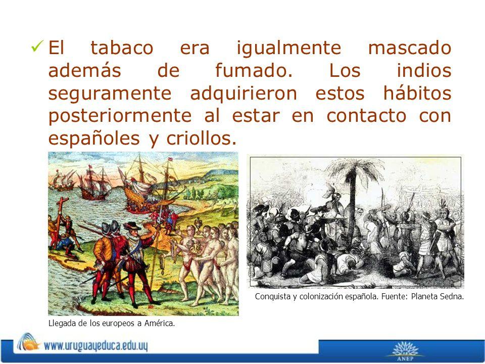 El tabaco era igualmente mascado además de fumado. Los indios seguramente adquirieron estos hábitos posteriormente al estar en contacto con españoles