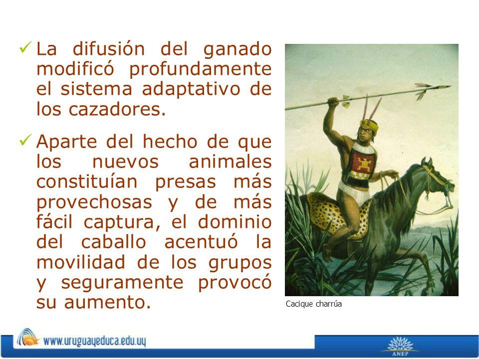 La difusión del ganado modificó profundamente el sistema adaptativo de los cazadores. Aparte del hecho de que los nuevos animales constituían presas m