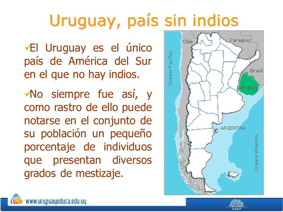 Uruguay, país sin indios El Uruguay es el único país de América del Sur en el que no hay indios. No siempre fue así, y como rastro de ello puede notar