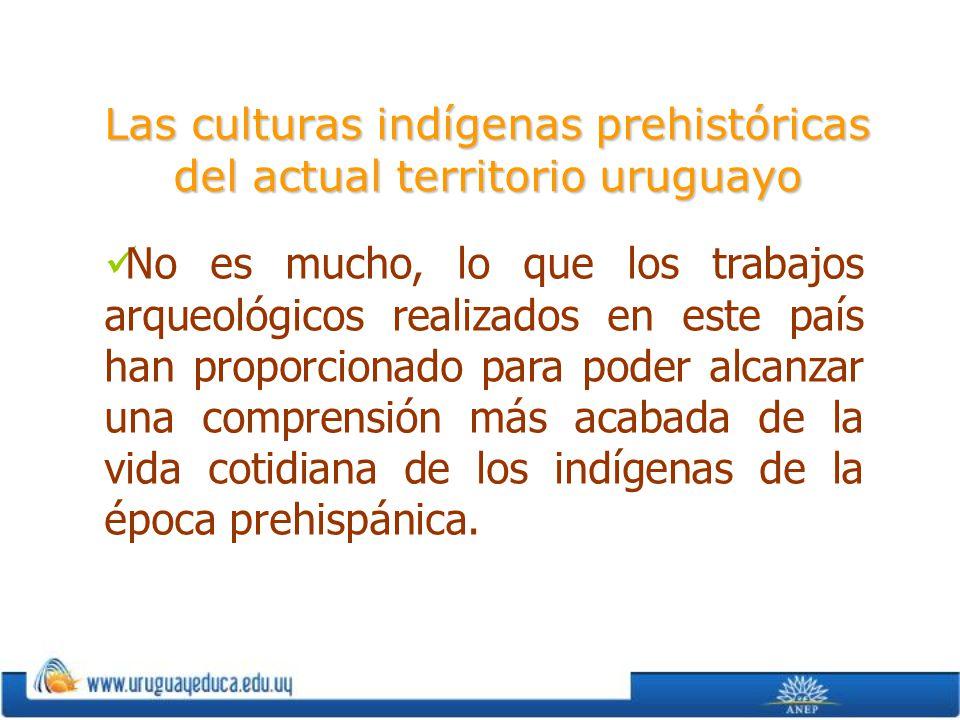 Las culturas indígenas prehistóricas del actual territorio uruguayo No es mucho, lo que los trabajos arqueológicos realizados en este país han proporc