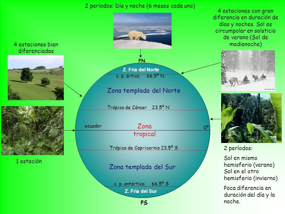 Zona tropical Zona templada del Norte Zona templada del Sur Z.