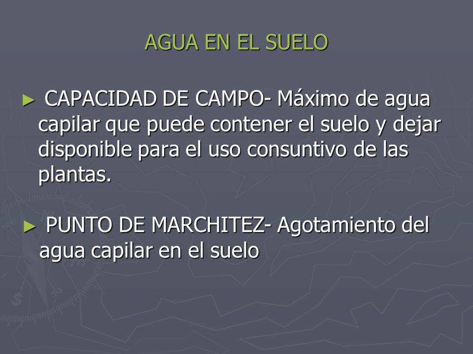 AGUA EN EL SUELO CAPACIDAD DE CAMPO- Máximo de agua capilar que puede contener el suelo y dejar disponible para el uso consuntivo de las plantas. CAPA
