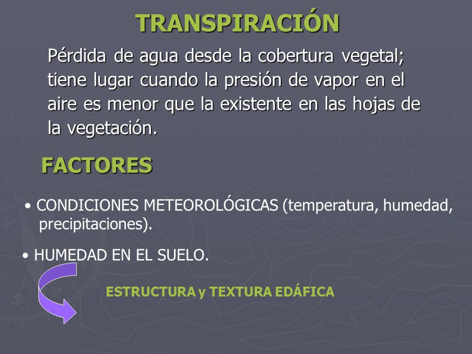 TRANSPIRACIÓN Pérdida de agua desde la cobertura vegetal; tiene lugar cuando la presión de vapor en el aire es menor que la existente en las hojas de
