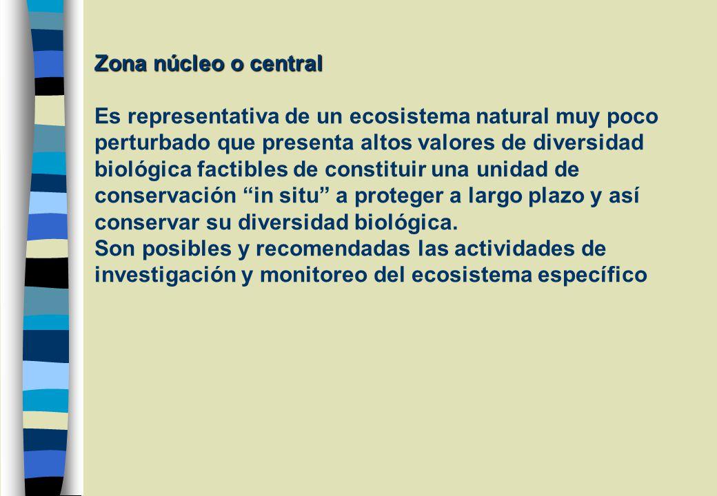 Zona núcleo o central Zona núcleo o central Es representativa de un ecosistema natural muy poco perturbado que presenta altos valores de diversidad biológica factibles de constituir una unidad de conservación in situ a proteger a largo plazo y así conservar su diversidad biológica.