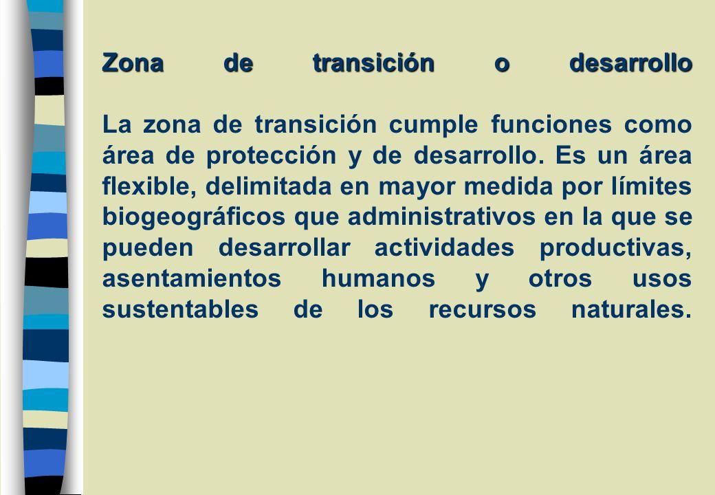 Zona de transición o desarrollo Zona de transición o desarrollo La zona de transición cumple funciones como área de protección y de desarrollo.