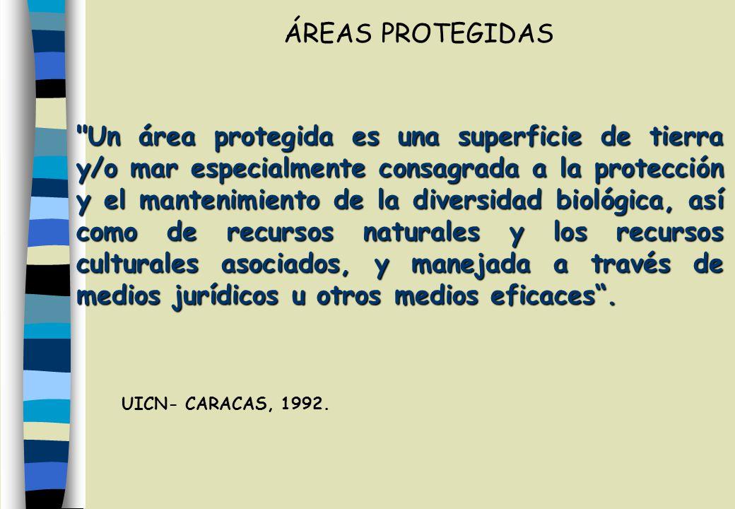 Un área protegida es una superficie de tierra y/o mar especialmente consagrada a la protección y el mantenimiento de la diversidad biológica, así como de recursos naturales y los recursos culturales asociados, y manejada a través de medios jurídicos u otros medios eficaces.