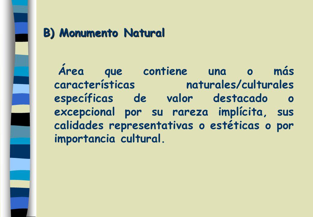 B) Monumento Natural Área que contiene una o más características naturales/culturales específicas de valor destacado o excepcional por su rareza implícita, sus calidades representativas o estéticas o por importancia cultural.