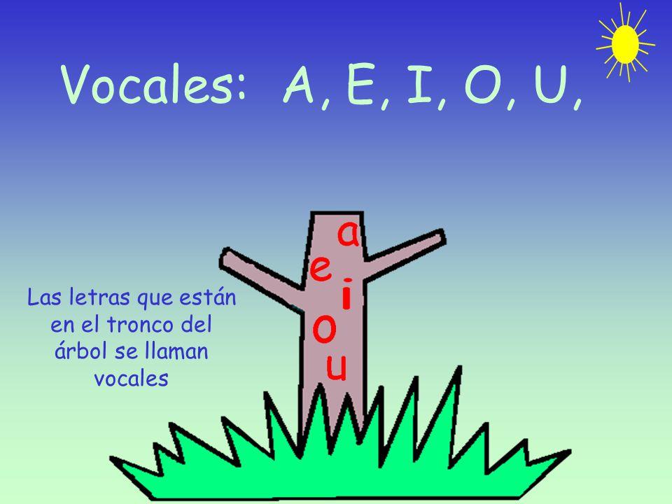 Vocales: A, E, I, O, U, Las letras que están en el tronco del árbol se llaman vocales