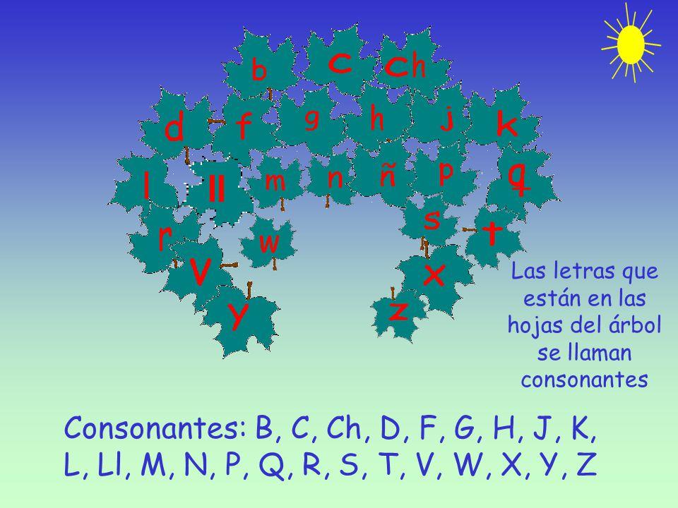 Las letras que están en las hojas del árbol se llaman consonantes Consonantes: B, C, Ch, D, F, G, H, J, K, L, Ll, M, N, P, Q, R, S, T, V, W, X, Y, Z