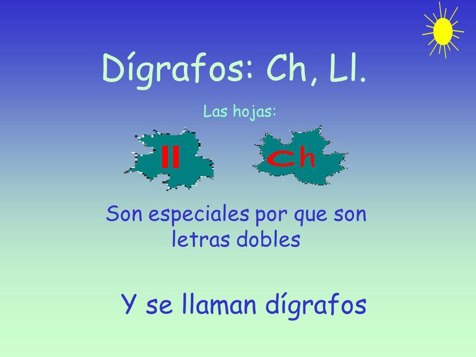 Dígrafos: Ch, Ll. Las hojas: Son especiales por que son letras dobles Y se llaman dígrafos